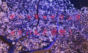 ダークギャザリング【最新第28話】旧Ⅰ水門③瑰麗 ネタバレと感想!